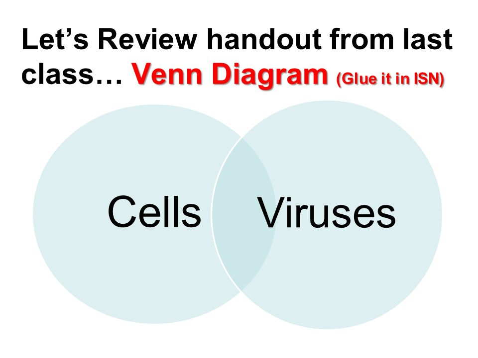 Virus venn diagram circuit wiring and diagram hub virus vs cell venn diagram kleo beachfix co rh kleo beachfix co prokaryote eukaryote virus venn diagram bacteria virus venn diagram ccuart Image collections