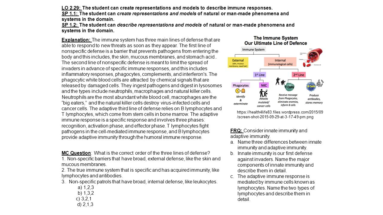 LO 2.29: The student can create representations and models to describe immune responses.
