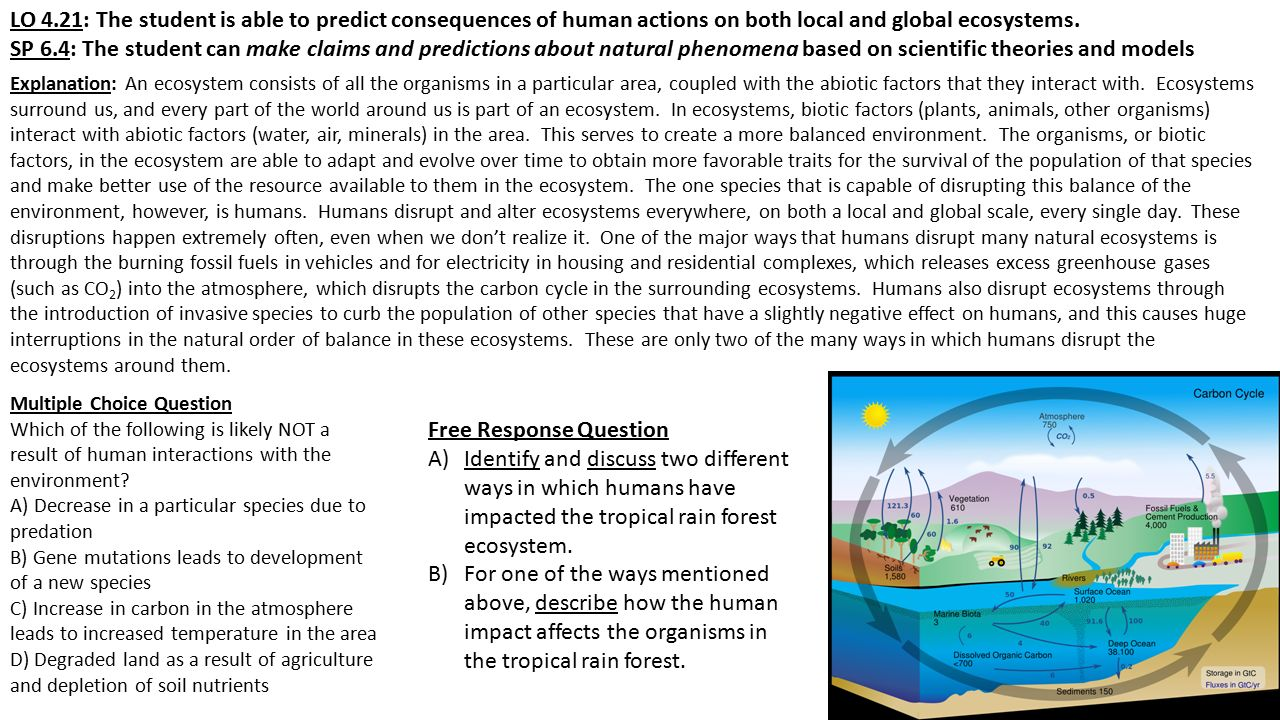 LO 4.21: The student is able to predict consequences of human actions on both local and global ecosystems.
