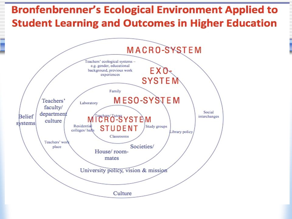 Write my ecological systems theory essay