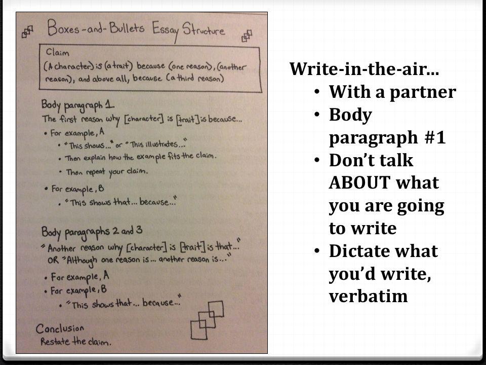 literary essay example