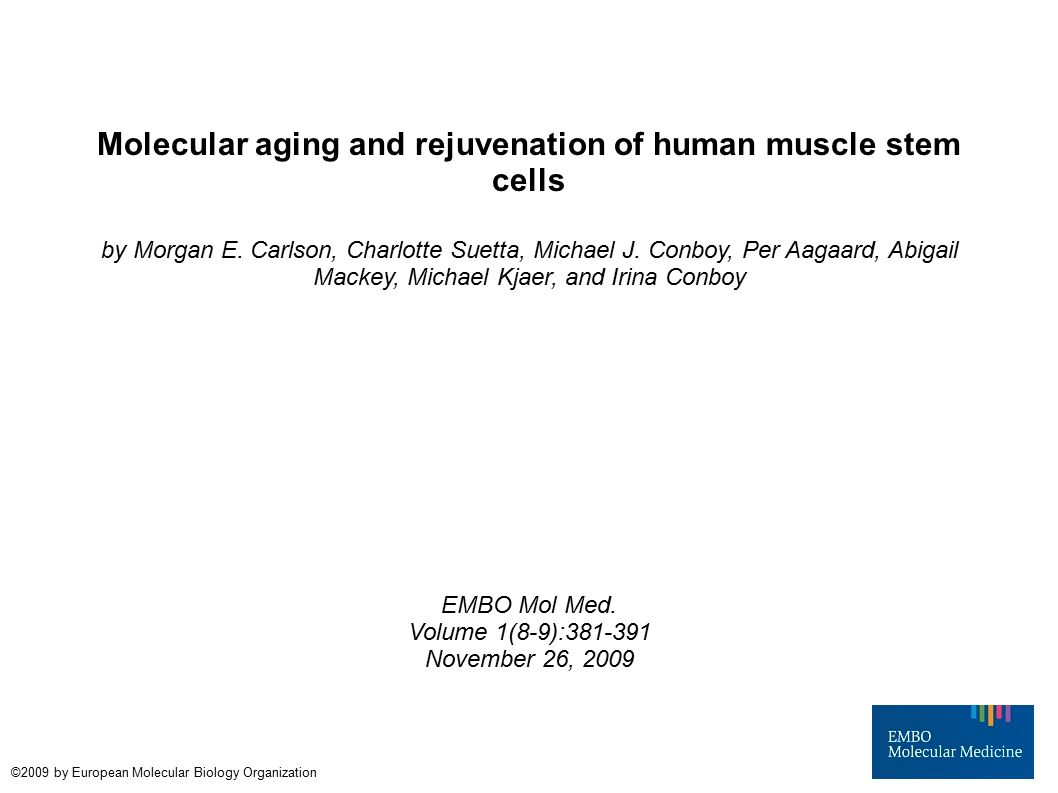 molecular aging and rejuvenation of human muscle stem cells by, Muscles