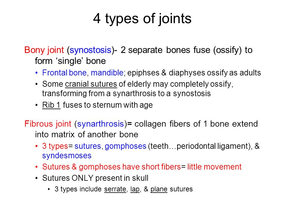 Chapter 9 Pages , Arthrology= study of joints & associated ...