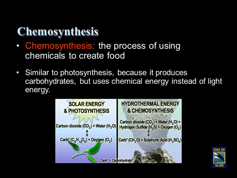 source for chemosynthesis Photosynthesis is a process used by plants and other organisms not all organisms that use light as a source of energy carry out photosynthesis chemosynthesis.