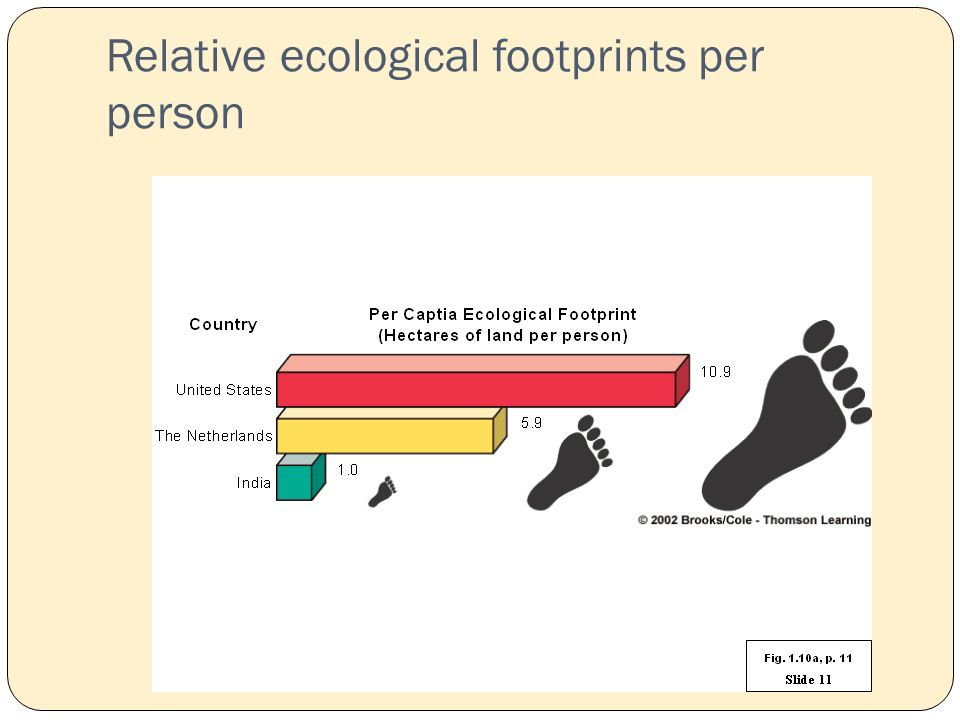 Relative ecological footprints per person