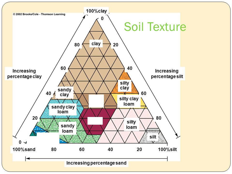 100%clay Increasing percentage silt Increasing percentage clay %sand %silt Increasing percentage sand sandy clay silty clay silty clay loam clay loam silty loam silt sandy clay loam sandy loam loamy sand Soil Texture