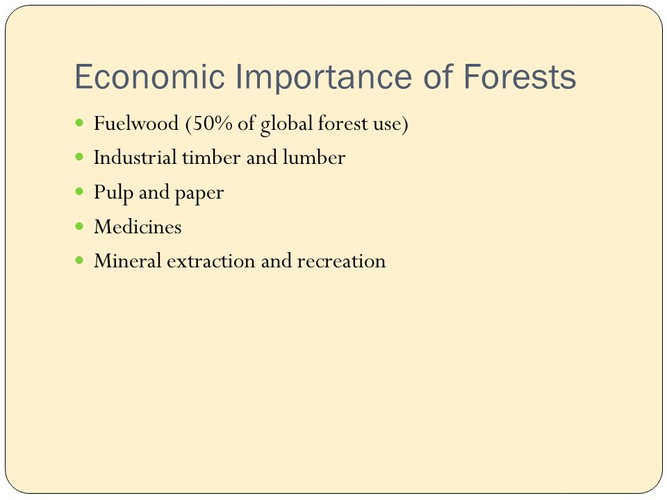 Economic Importance of Forests Fuelwood (50% of global forest use) Industrial timber and lumber Pulp and paper Medicines Mineral extraction and recreation