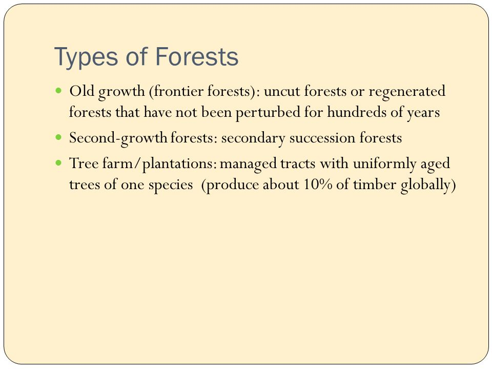 Types of Forests Old growth (frontier forests): uncut forests or regenerated forests that have not been perturbed for hundreds of years Second-growth forests: secondary succession forests Tree farm/plantations: managed tracts with uniformly aged trees of one species (produce about 10% of timber globally)