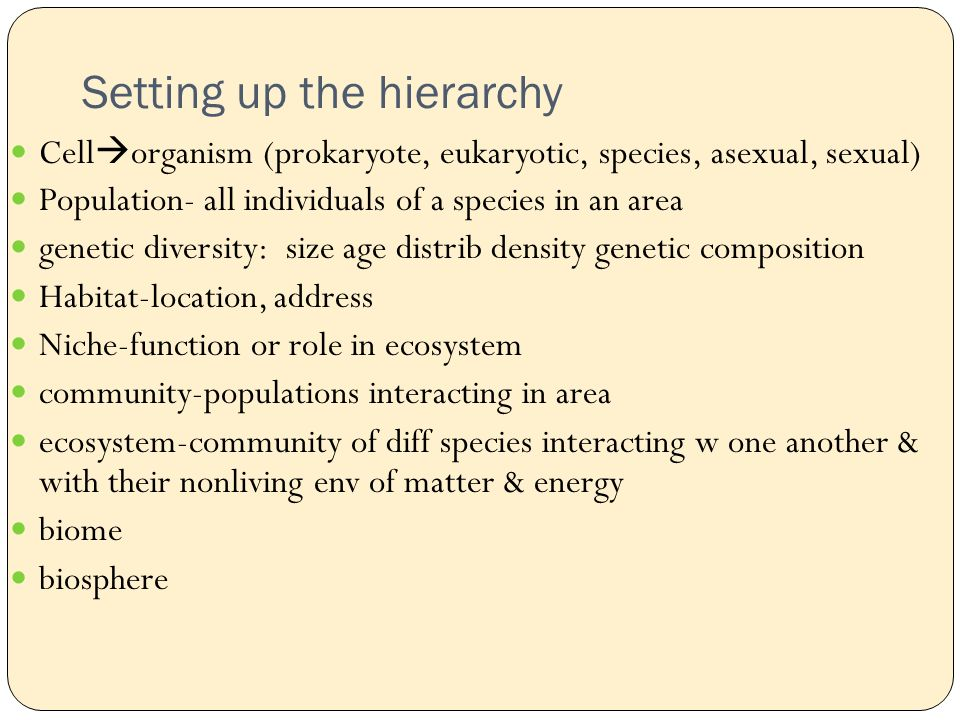 Setting up the hierarchy Cell  organism (prokaryote, eukaryotic, species, asexual, sexual) Population- all individuals of a species in an area genetic diversity: size age distrib density genetic composition Habitat-location, address Niche-function or role in ecosystem community-populations interacting in area ecosystem-community of diff species interacting w one another & with their nonliving env of matter & energy biome biosphere