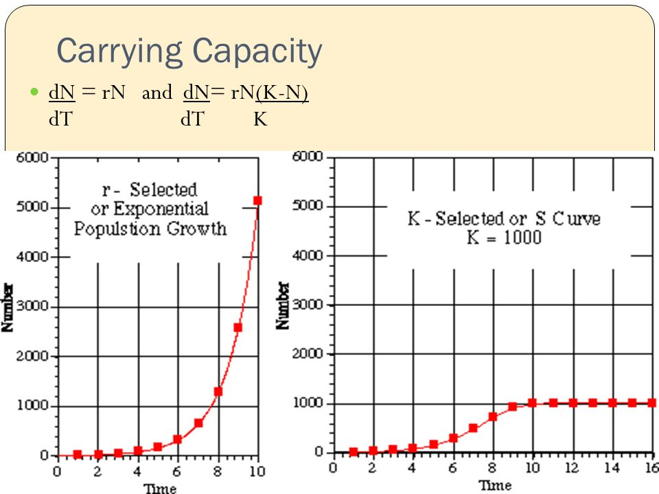 Carrying Capacity dN = rN and dN= rN(K-N) dT dT K