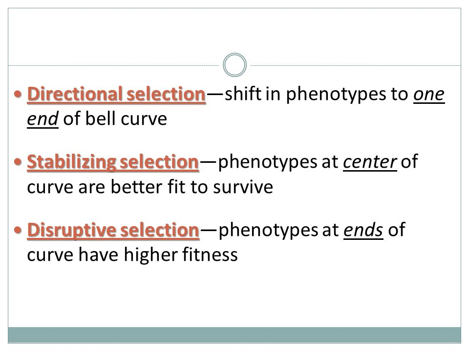 Directional selection Directional selection—shift in phenotypes to one end of bell curve Stabilizing selection Stabilizing selection—phenotypes at center of curve are better fit to survive Disruptive selection Disruptive selection—phenotypes at ends of curve have higher fitness