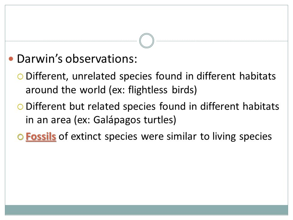 Darwin's observations:  Different, unrelated species found in different habitats around the world (ex: flightless birds)  Different but related species found in different habitats in an area (ex: Galápagos turtles)  Fossils  Fossils of extinct species were similar to living species