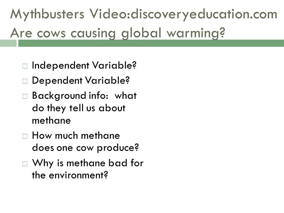 Flashcard Warm-up Biodiversity Variation in the different species ...