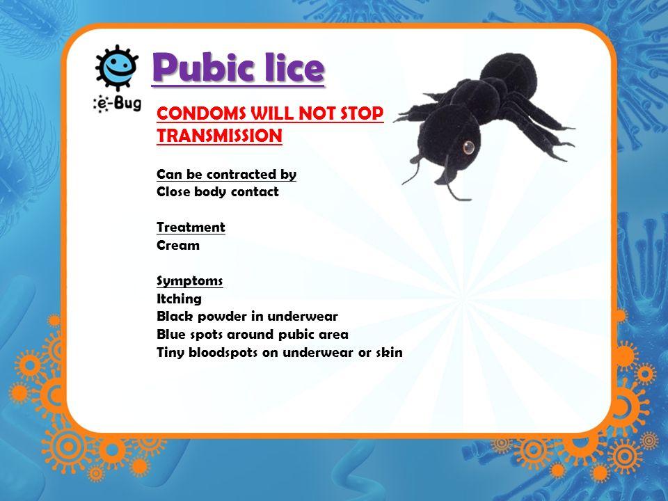 Condoms pubic lice