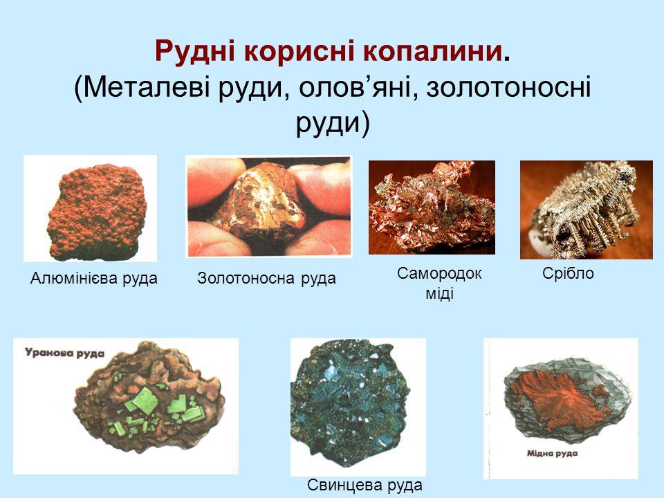 Рудні корисні копалини.