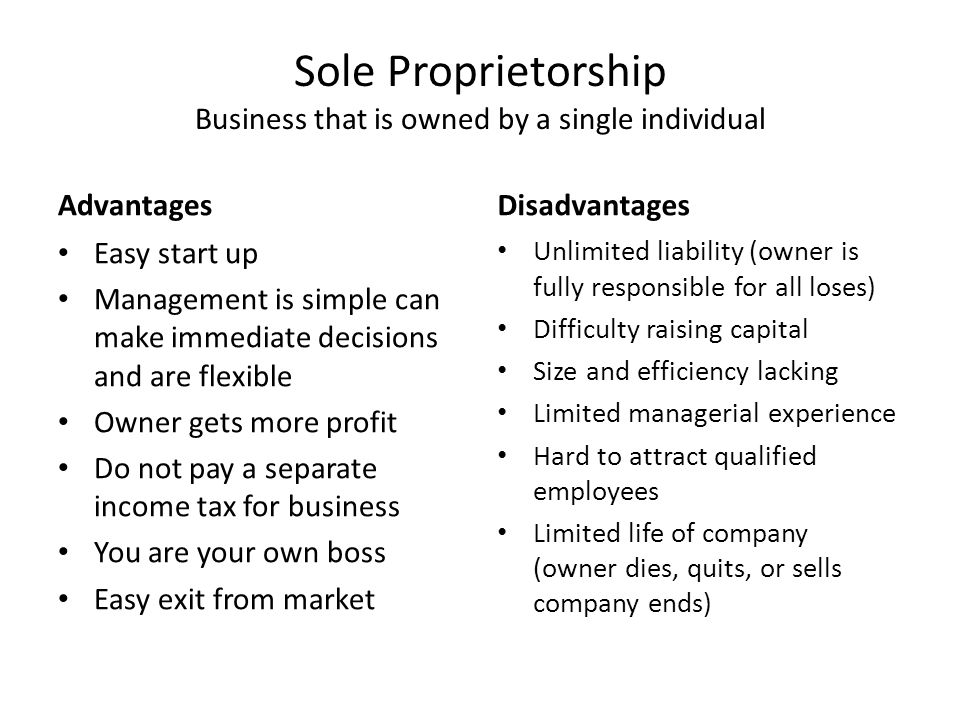 3 sole proprietorship - Being Your Own Boss Advantages And Disadvantages