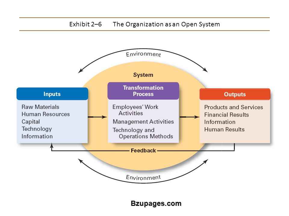 Bzupages.com Exhibit 2–6The Organization as an Open System