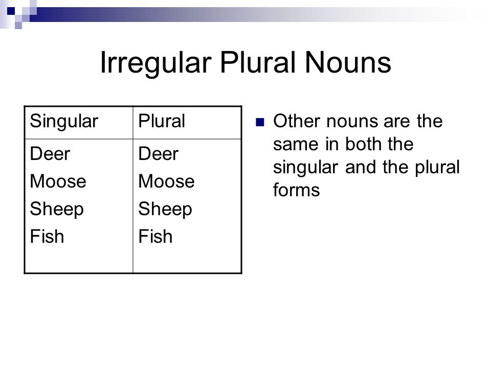 Nouns. A noun is a word that names a person, place or a thing ...
