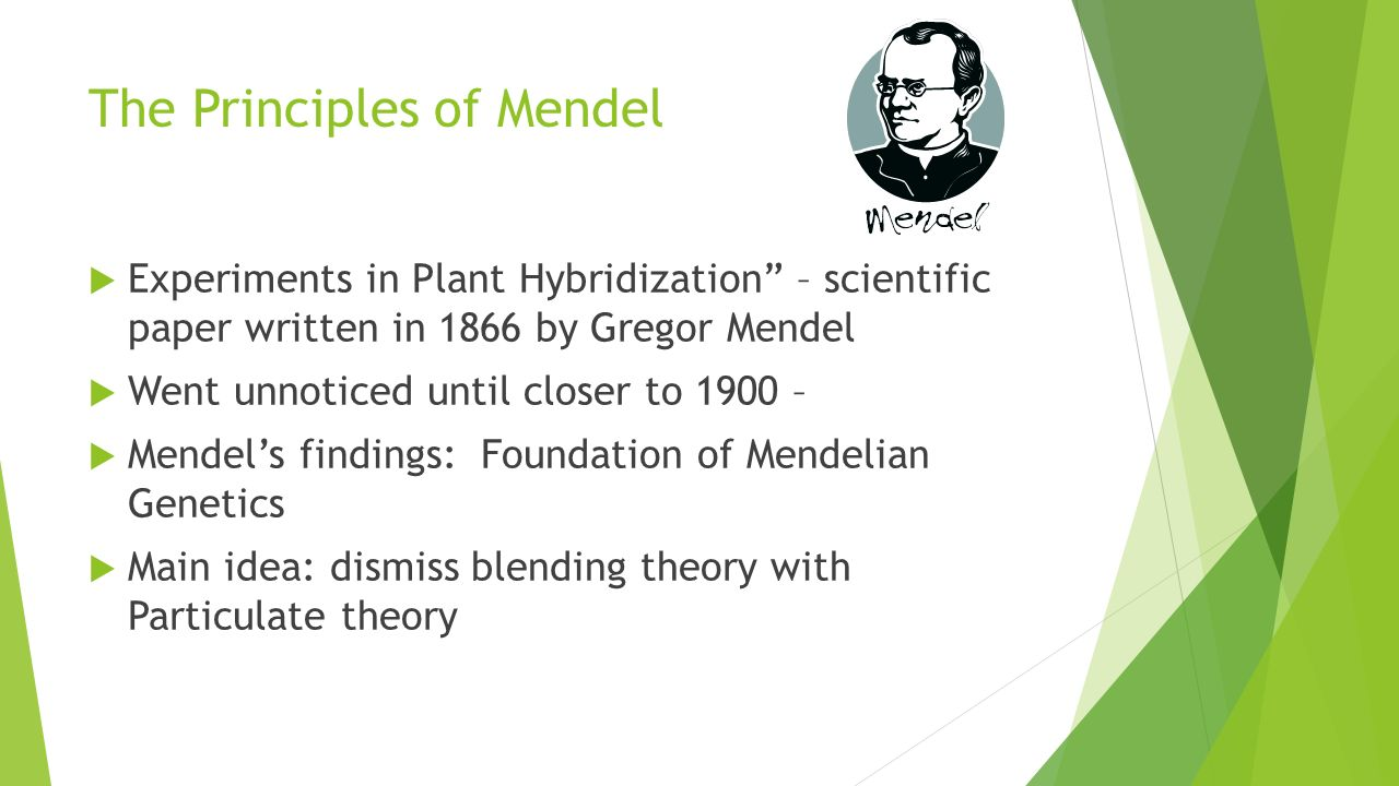 mendelian genetics lab
