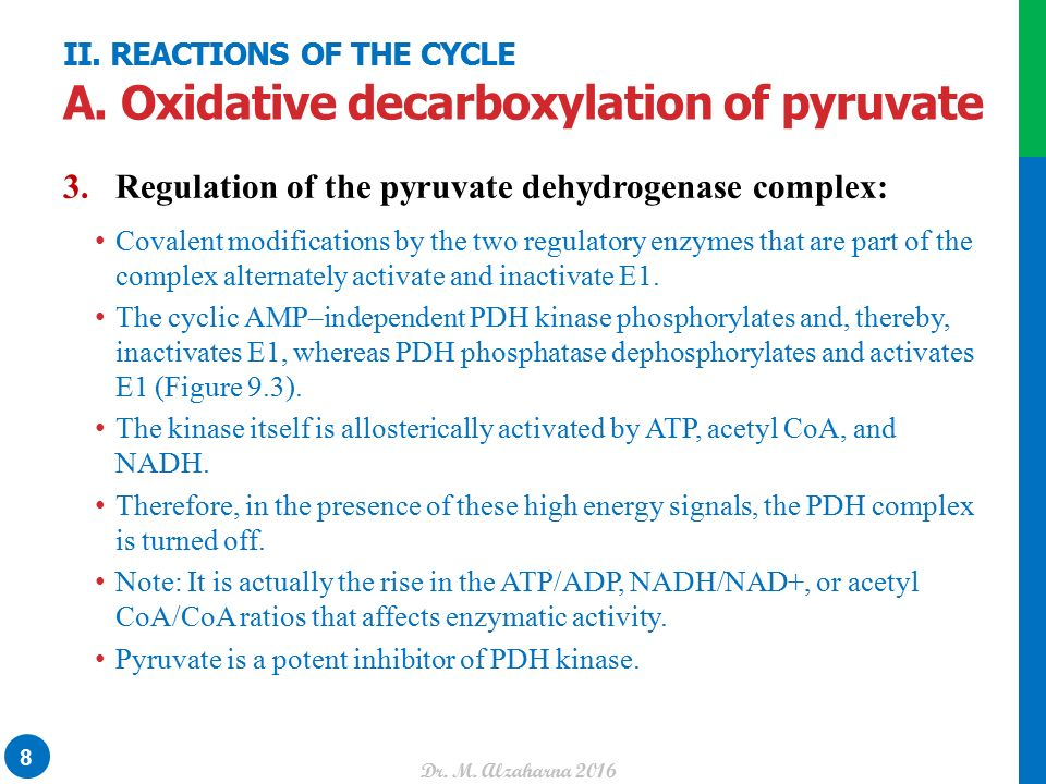 UNIT II: Bioenergetics and Carbohydrate Metabolism CHAPTER 9 ...