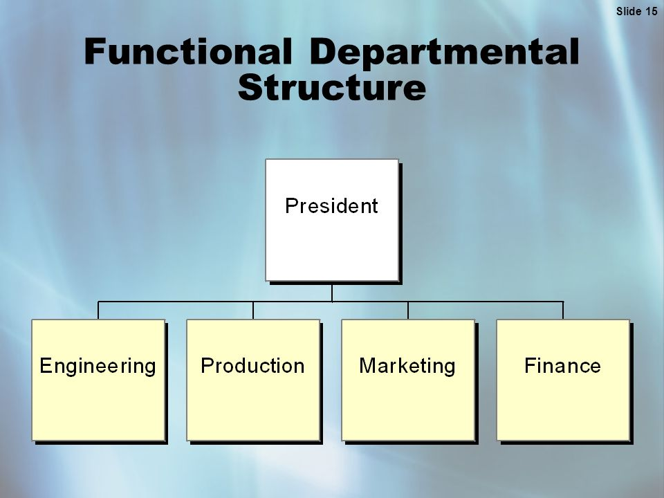 Slide 15 Functional Departmental Structure
