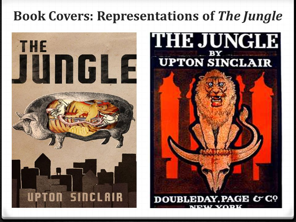 the jungle by upton sinclair essays Excerpt from essay : upton sinclair's the jungle in 1906, a book was published that remains controversial in some circles more than one hundred years later the jungle by upton sinclair was a journalist's fictionalized account of worker conditions in the meatpacking industry and slums of chicago.