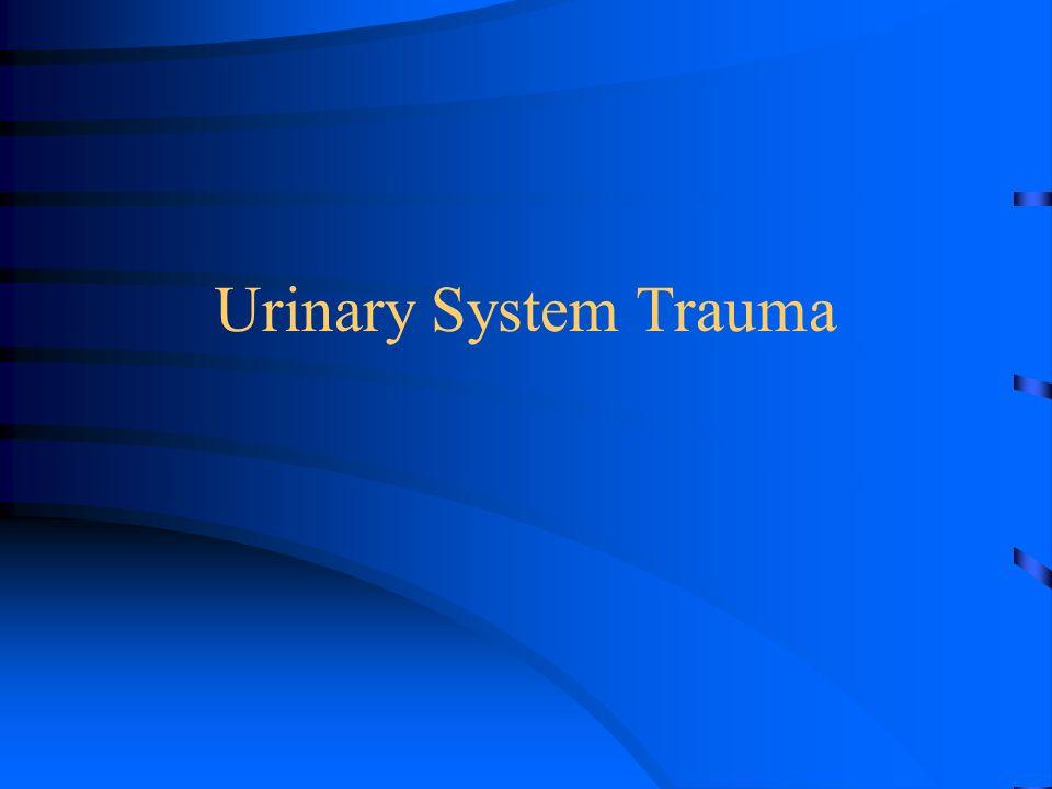 Urinary System Trauma