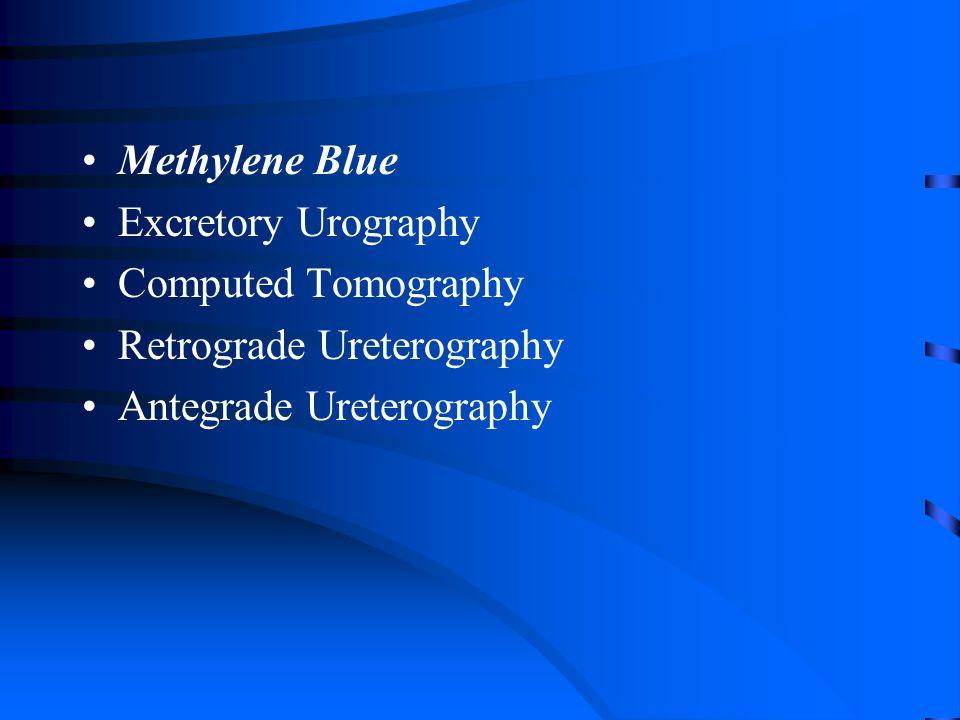 Methylene Blue Excretory Urography Computed Tomography Retrograde Ureterography Antegrade Ureterography