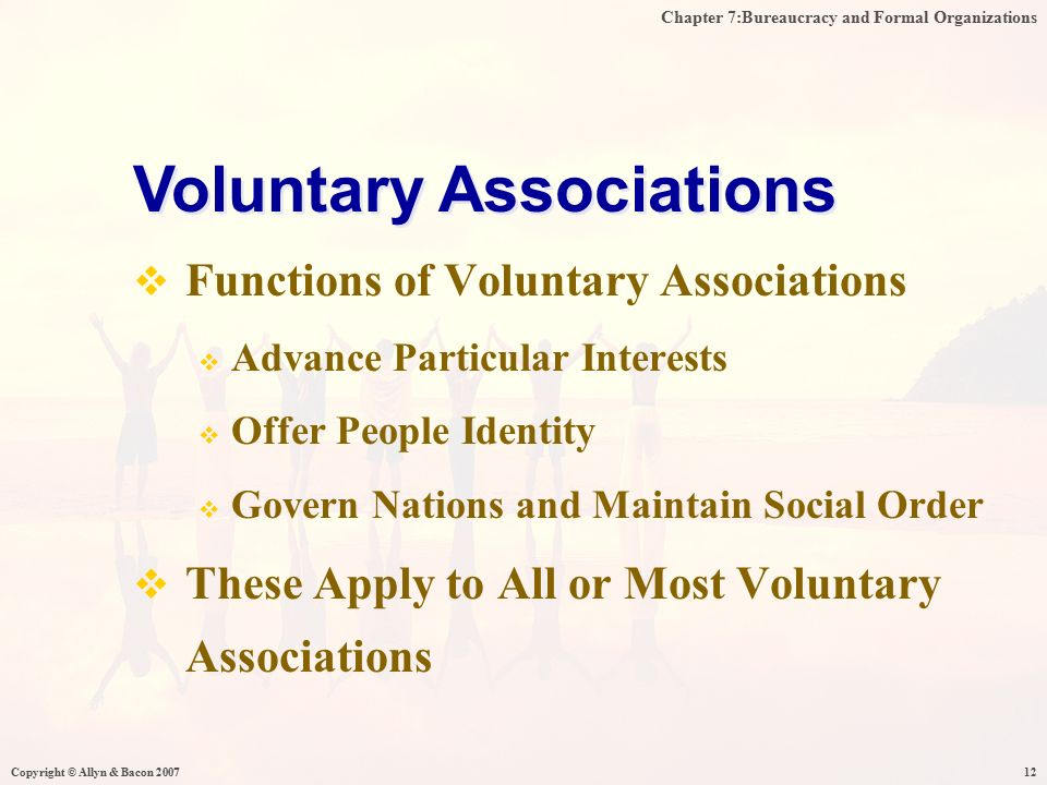 Chapter 7:Bureaucracy and Formal Organizations Copyright © Allyn & Bacon 200712  Functions of Voluntary Associations  Advance Particular Interests  Offer People Identity  Govern Nations and Maintain Social Order  These Apply to All or Most Voluntary Associations Voluntary Associations