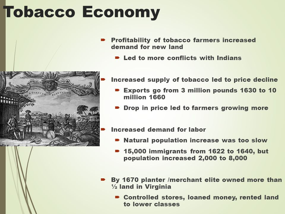 Tobacco Economy  Profitability of tobacco farmers increased demand for new land  Led to more conflicts with Indians  Increased supply of tobacco led to price decline  Exports go from 3 million pounds 1630 to 10 million 1660  Drop in price led to farmers growing more  Increased demand for labor  Natural population increase was too slow  15,000 immigrants from 1622 to 1640, but population increased 2,000 to 8,000  By 1670 planter /merchant elite owned more than ½ land in Virginia  Controlled stores, loaned money, rented land to lower classes