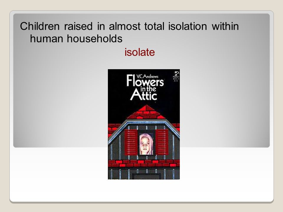 Children raised in almost total isolation within human households isolate