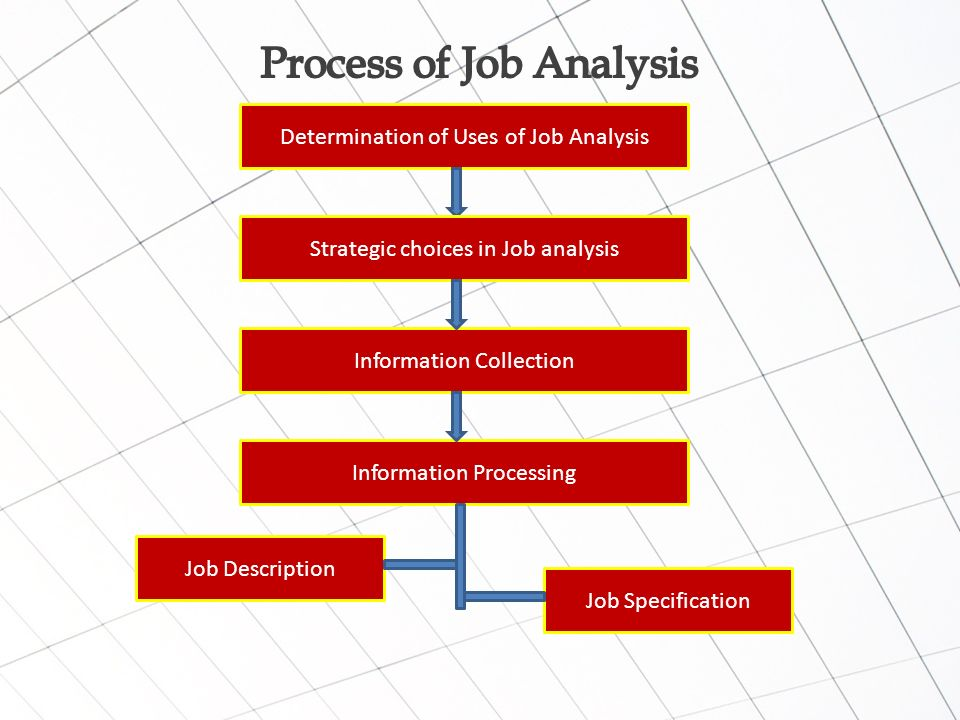 Job Analysis Is The Process Of Studying And Collecting Information