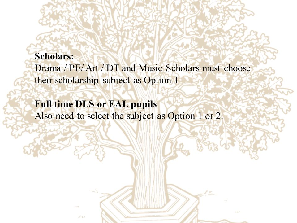 What gcse options are there?