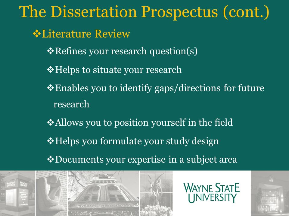 define literature review dissertation Step-by-step guide to conducting a literature search and writing up the literature review chapter in graduate dissertations and in professional doctorate theses examples of best and worst practice drawn from real literature reviews are included.