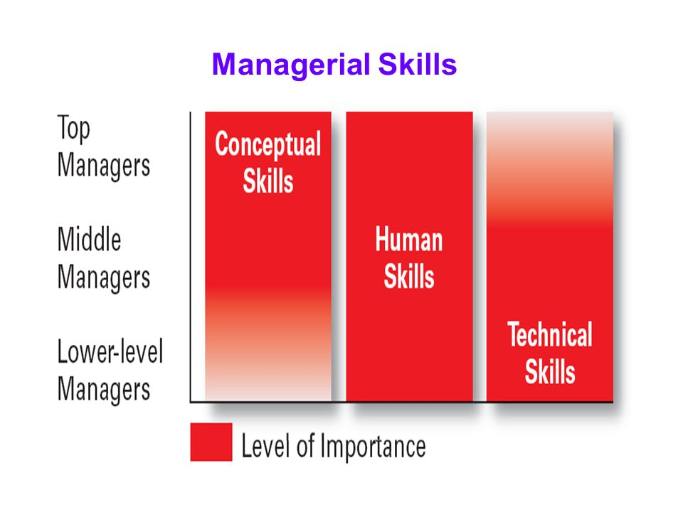 managers with conceptual skills Importance of managerial skills in an organization technical skills of successful managers what are conceptual skills in management importance of human relations in an organization.