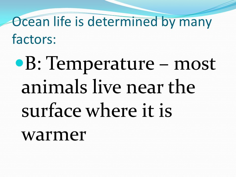 Ocean life is determined by many factors: C: Water Pressure is less at the surface allowing for different kinds of life