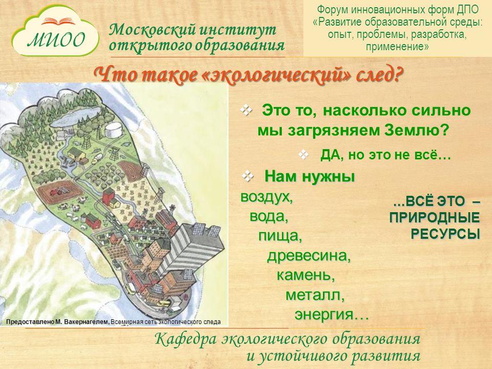 Московский институт открытого образования Кафедра экологического образования и устойчивого развития   Это то, насколько сильно мы загрязняем Землю.