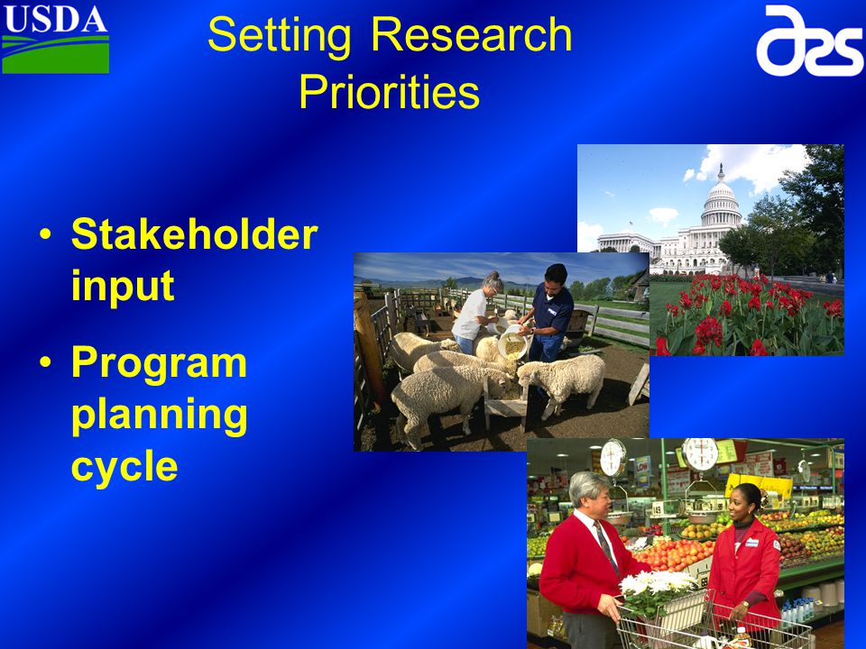 Input 5 years of Research 2 1 5 4 3 Planning of next 5- years