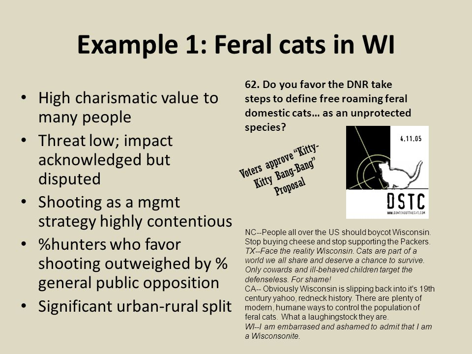 Example 1: Feral cats in WI High charismatic value to many people Threat low; impact acknowledged but disputed Shooting as a mgmt strategy highly cont