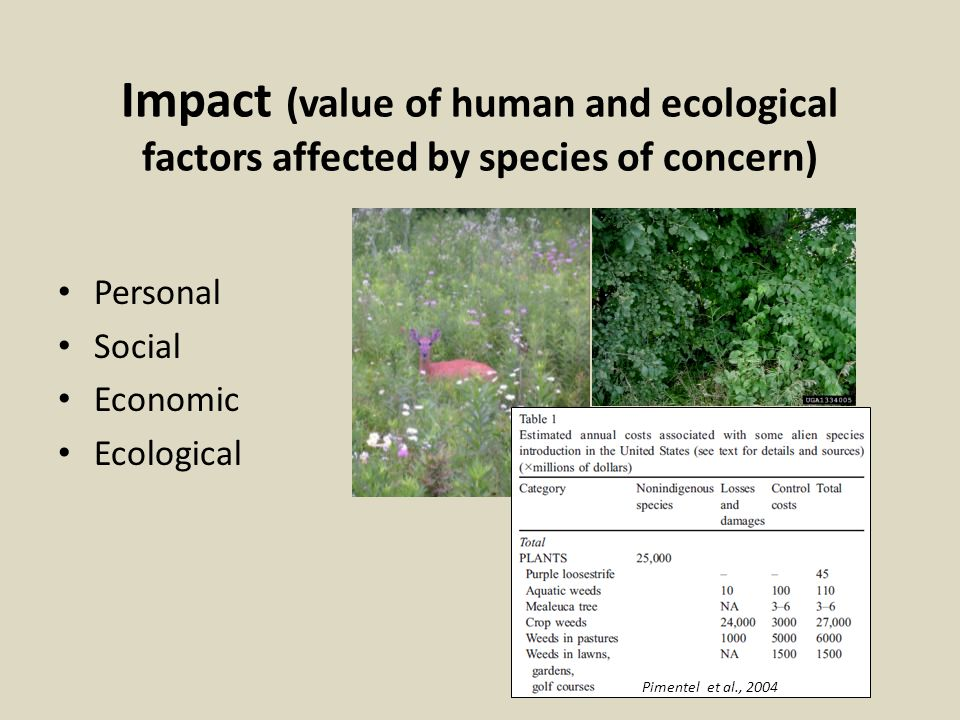 Impact (value of human and ecological factors affected by species of concern) Personal Social Economic Ecological Pimentel et al., 2004