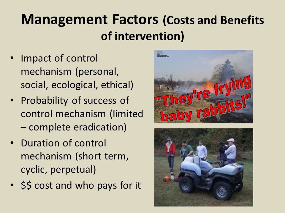 Management Factors (Costs and Benefits of intervention) Impact of control mechanism (personal, social, ecological, ethical) Probability of success of