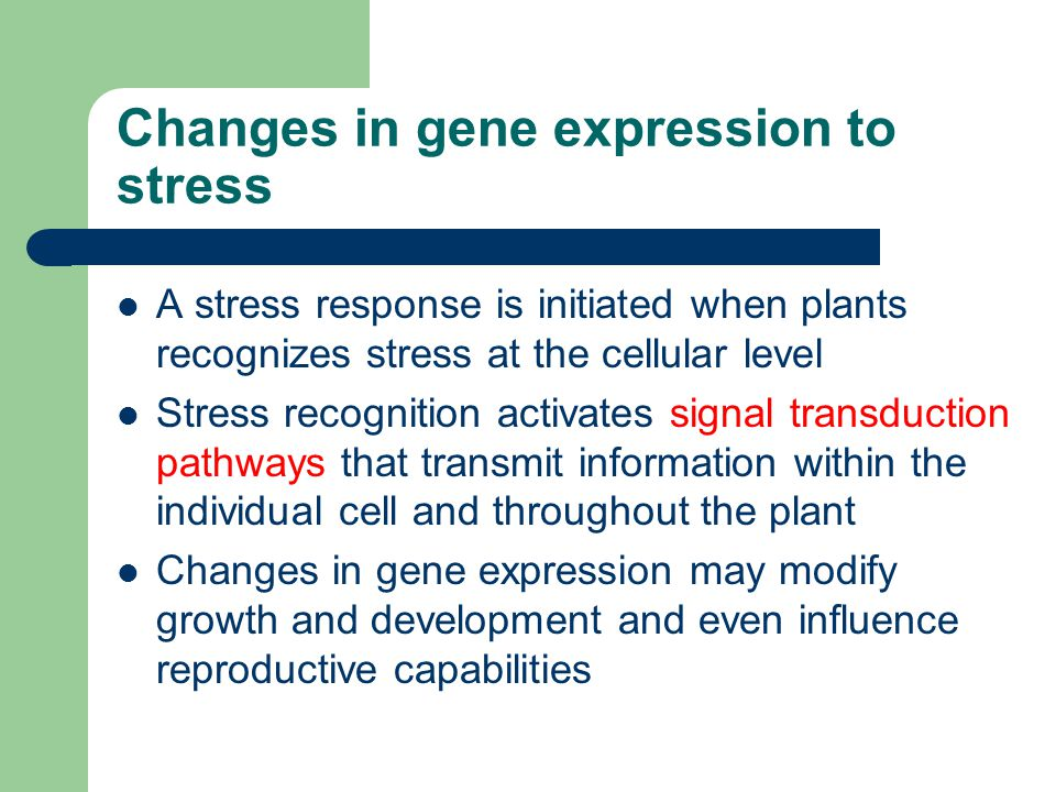 Changes in gene expression to stress A stress response is initiated when plants recognizes stress at the cellular level Stress recognition activates s