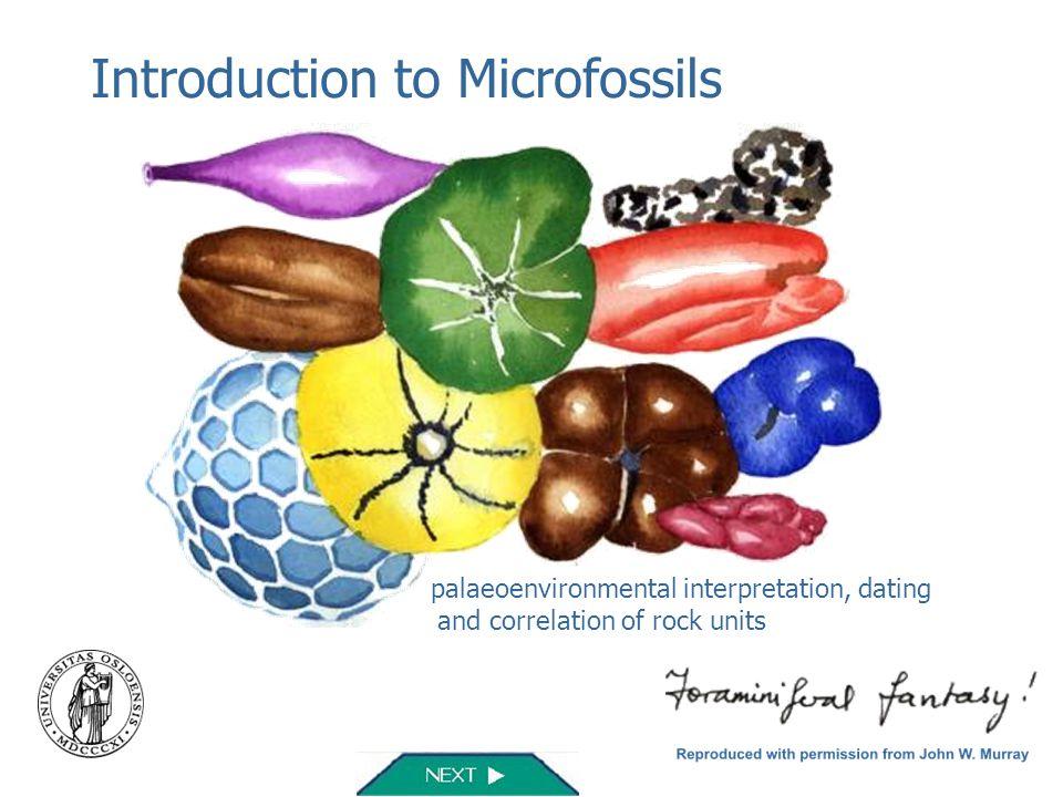 Introduction to Microfossils palaeoenvironmental interpretation, dating and correlation of rock units