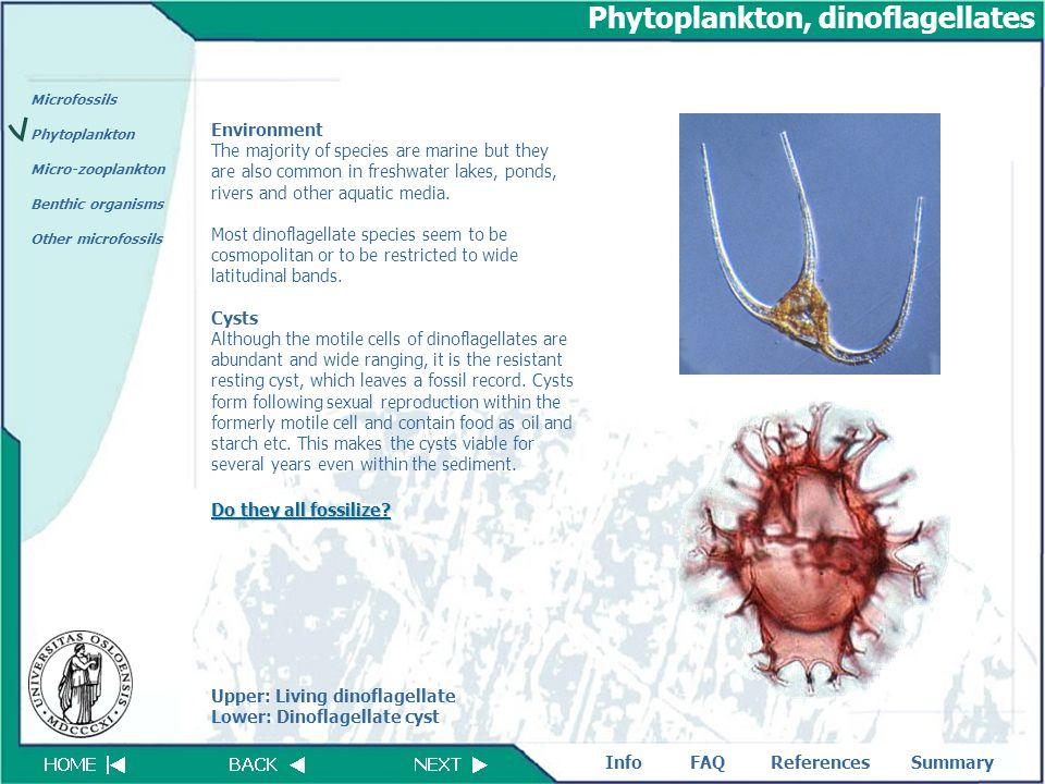 FAQReferencesSummaryInfo Microfossils Phytoplankton Micro-zooplankton Benthic organisms Other microfossils Phytoplankton, dinoflagellates Environment