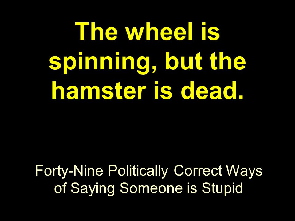 Forty-Nine Politically Correct Ways of Saying Someone is Stupid The wheel is spinning, but the hamster is dead.