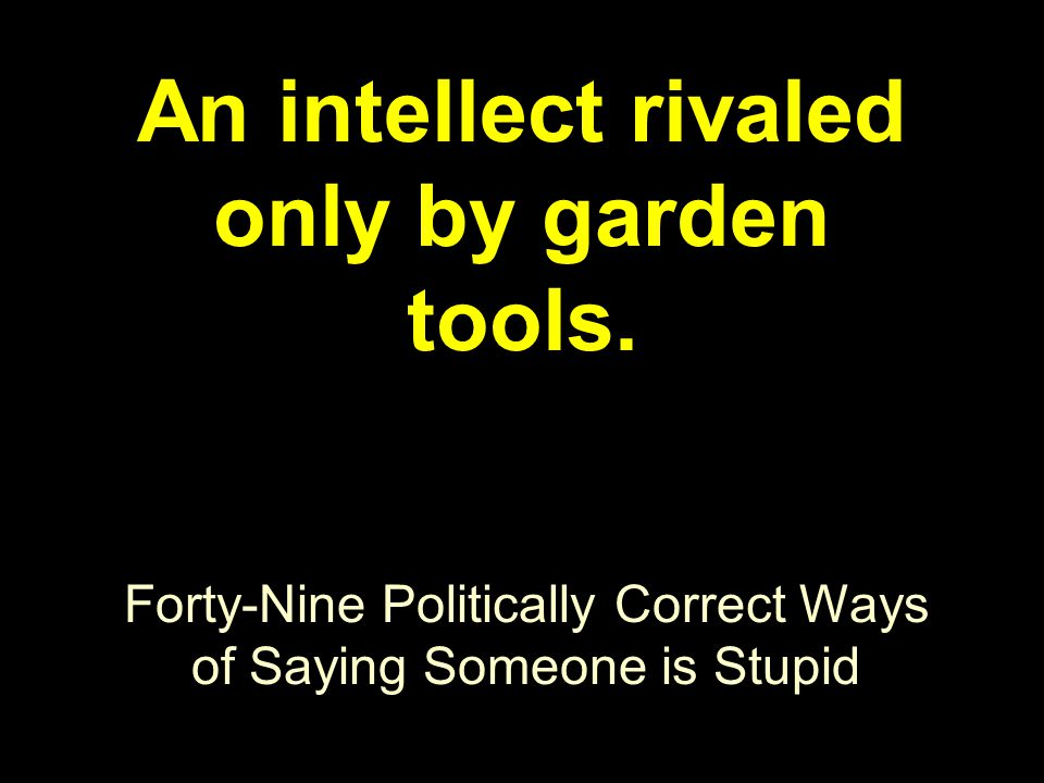 Forty-Nine Politically Correct Ways of Saying Someone is Stupid An intellect rivaled only by garden tools.