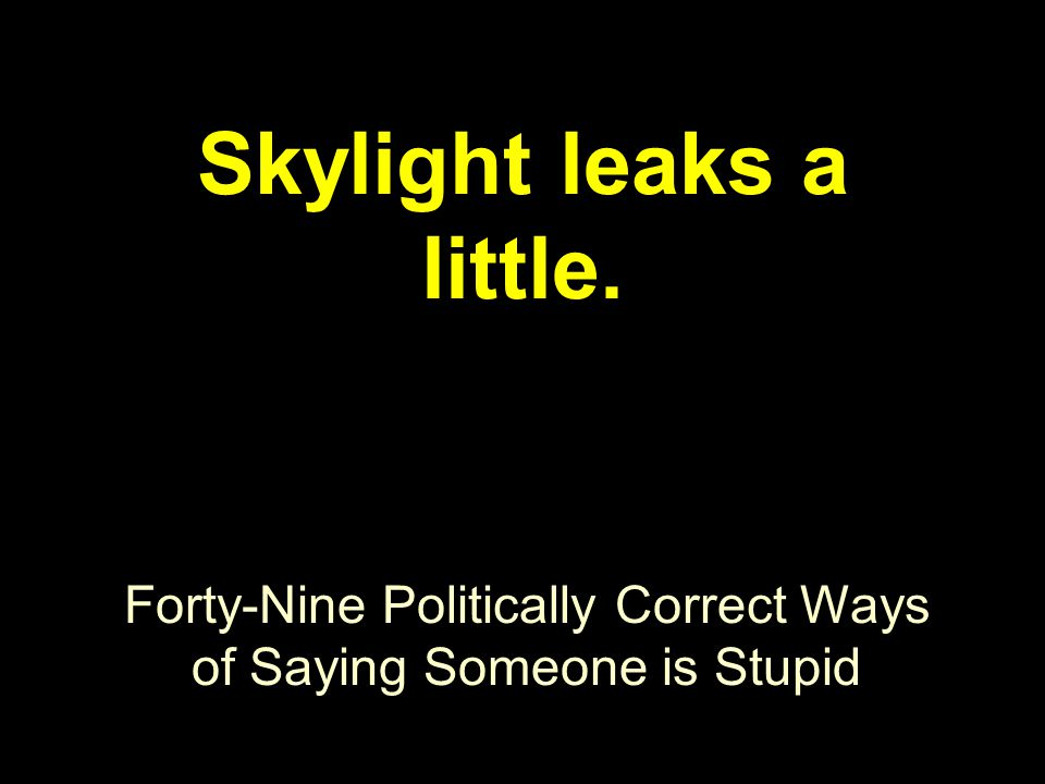 Forty-Nine Politically Correct Ways of Saying Someone is Stupid Skylight leaks a little.