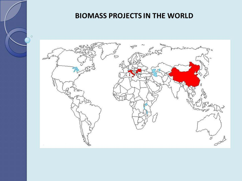 BIOMASS PROJECTS IN THE WORLD