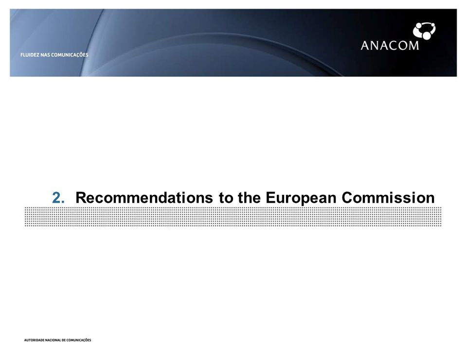 2.Recommendations to the European Commission