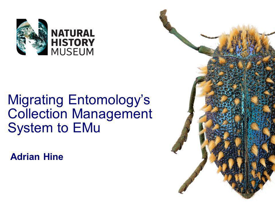 Migrating Entomologys Collection Management System to EMu Adrian Hine